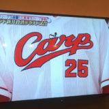 VS 嵐 広島カープ+.゚(*´∀`)b゚+.゚