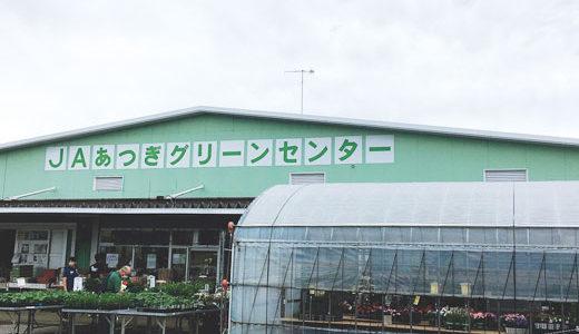 JAあつぎグリーンセンター(✿´꒳`)ノ°+.*