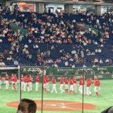 巨人 vs 広島カープ 2021年第13回戦